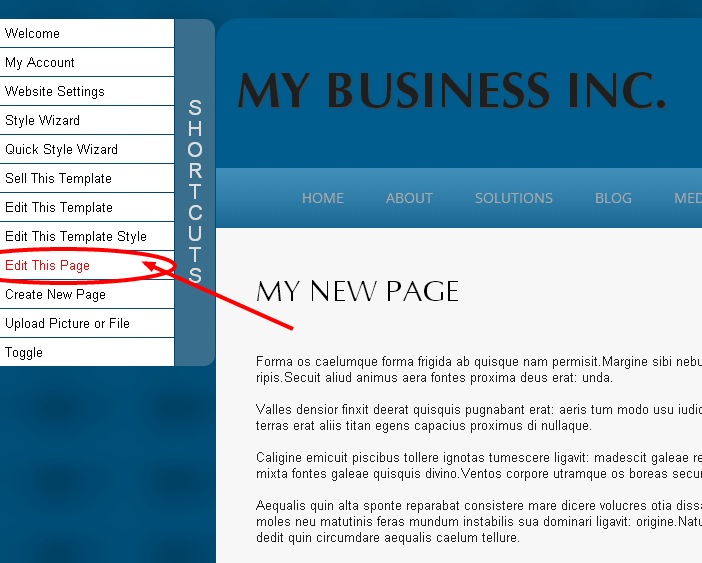 Updating Webpages on a Monkey Business Website